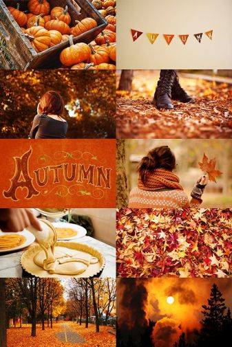 e60c7c5f28c8ce5c7359493330807cde--autumn-photos-fall-pics.jpg