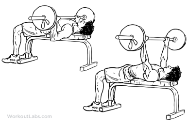 Barbell_Bench_Press