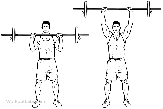 Standing_Barbell_Shoulder_Press