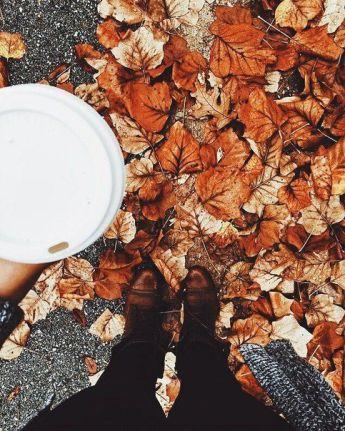 df444fb0913a6e15b49b9ab9b1afb95d--chai-latte-pumpkin-spice-latte